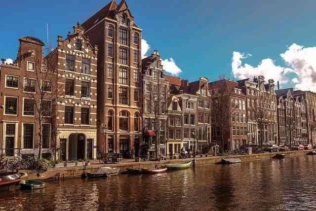 Tłumaczenia holenderskiego online